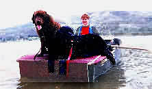 porta-bote also known as portaboat porta-boat portabote porta bote foldboat and foldaboat is a family rowboat for the dogs and pets width=